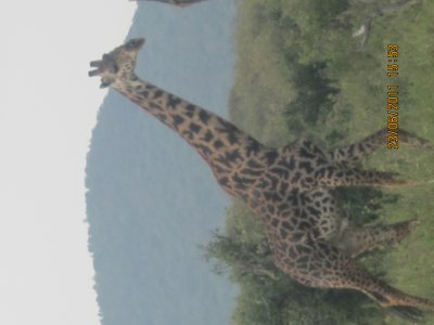 Kenya !!!!