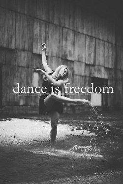 Le bonheur ~ Katherine Pancol