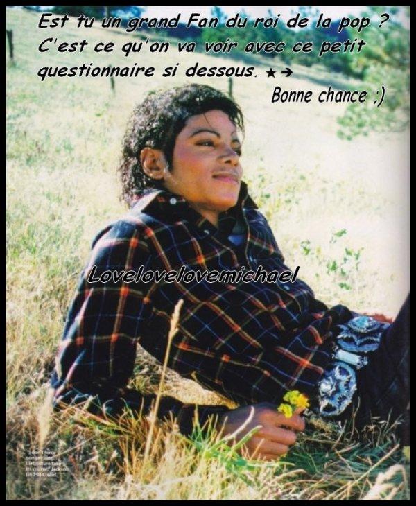 ~•.Seul un Fan peut comprendre du tout au tout Michael.•~