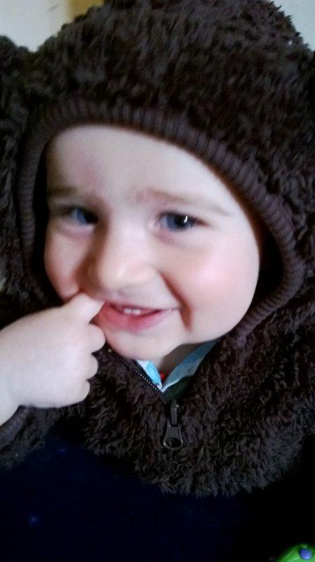 Mon petit ours