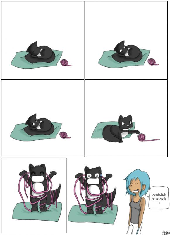 Abruti d'chat !