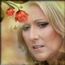 Photo de celinedion62011