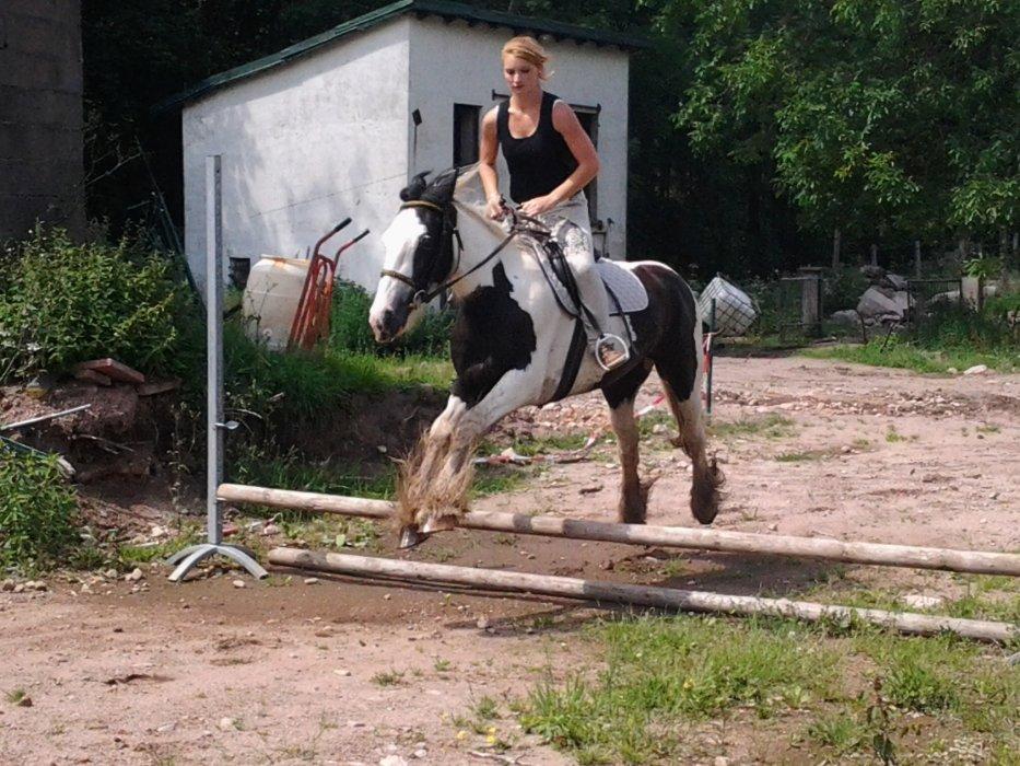 J'ai attrapé une maladie vieille comme l'humanité  et contre la quelle n'existe, à ce jour, aucun remède l'équitation ♥
