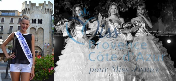 Elections locales pour Miss Provence