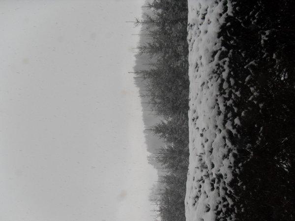 un hiver tranquille