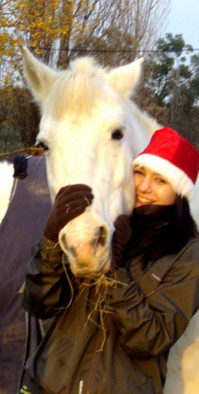 « Faites du cheval un compagnon et non un esclave, vous verrez quel ami extraordinaire il est. »