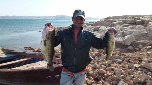 Un joli bass de 56 cm pour 2.5 kg fait par Pierre, un pros de la pêche et du matos venus tester des leurres et des bass marocains