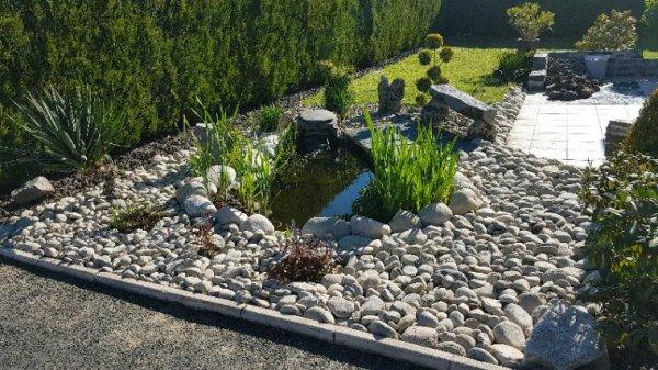 Rénovation du bassin à carpes