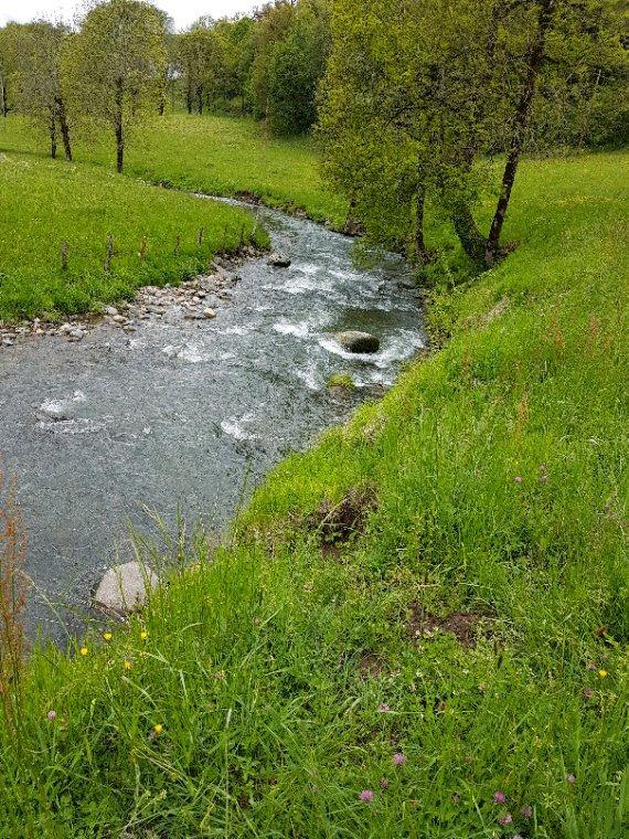 Petite sortie en ruisseaux  avec une de 37cm