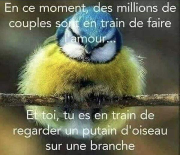 Et oui c est la vie...