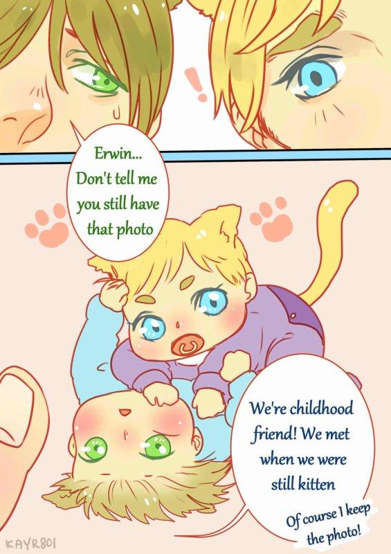 Mes chatons !!!! *O*