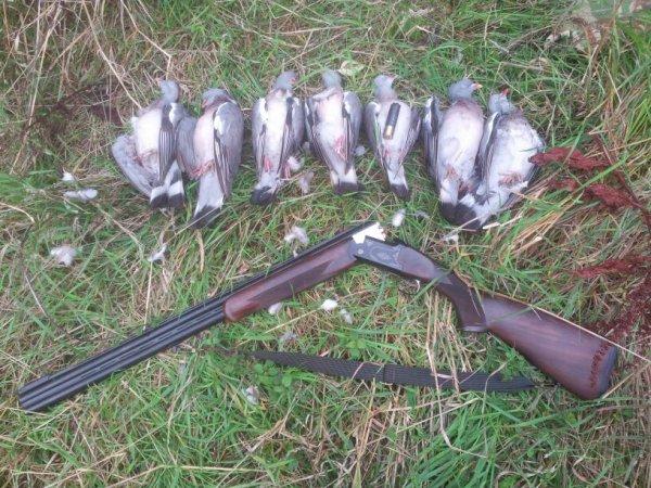 Matiné de chasse !