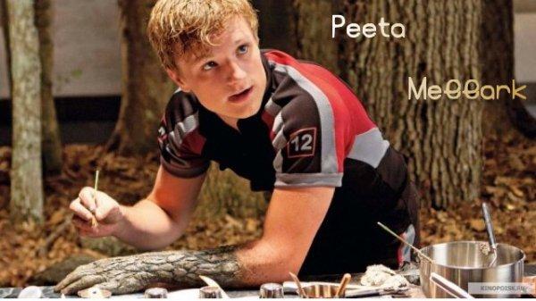 Katniss Everdeen (Jennifer Lawrence) et Peeta Mellark (Josh Hutcherson)