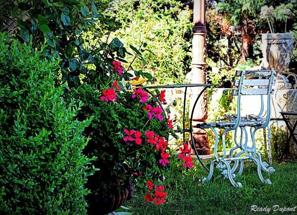 visite du jardin d'une artiste