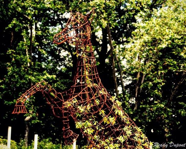 Est-ce que les maux rocalent le cheval et le papillon? Vanne florale