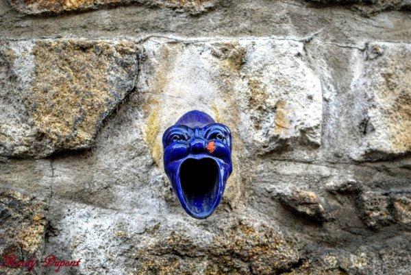 Saint Sauveur en Rue, massif du Pilat