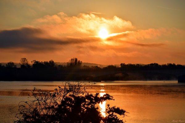 Sous le cygne du soleil levant
