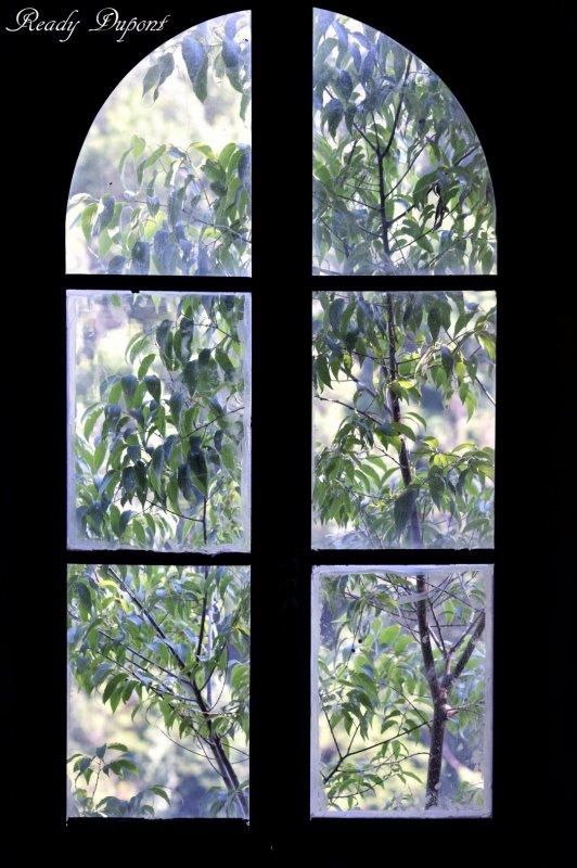 regarder au delà de la fenêtre, regarder au delà de la première impression pour voir le devenir