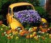 voiture fleurs