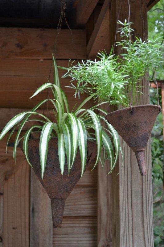 vieux entonnoir pot de fleurs