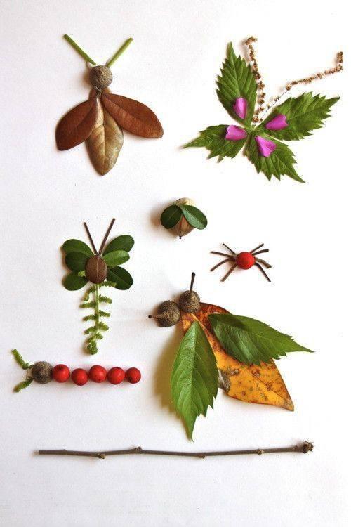 déco insectes avec des feuilles , branches ect...