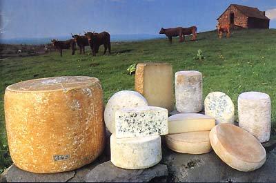 Recettes au fromage d'Auvergne