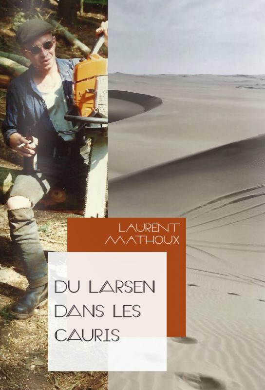 Du larsen dans les cauris - roman - de Laurent Mathoux
