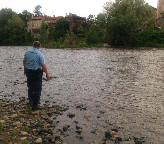 Un crocodile toujours recherché dans l'Allier par les sapeurs-pompiers