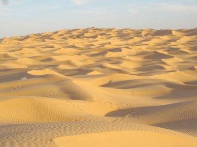 De quoi est composé le désert ?