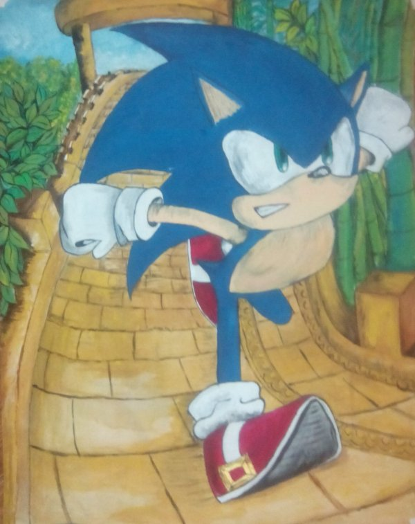 cour Sonic