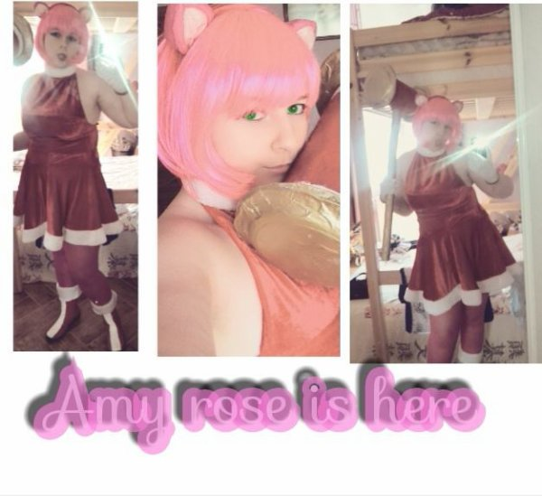 Amy rose is here