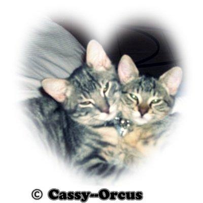 Bienvenue sur Cassy--Orcus