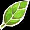 Notre blog neutre en carbonne!