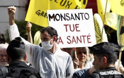 Le Roundup de Monsanto provoque des malformations :