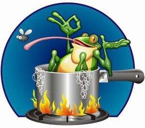 La grenouille qui ne savait pas qu'elle était cuite...