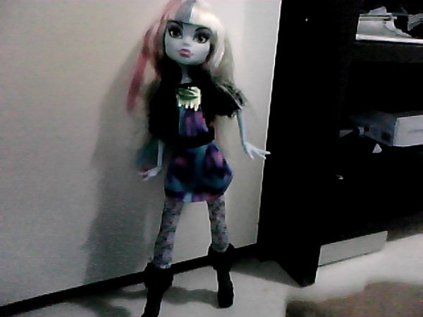 ma nouvelle monster high