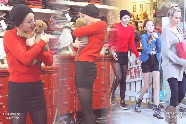 • Candid | 26 Novembre ; Miley Noah & Tish sont allées dans une animalerie pour que Noah achete un chiot tout mignon.