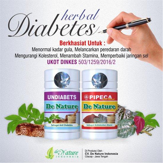 jual obat diabeets produk de nature