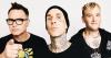 rocker BLINK-182 jacker