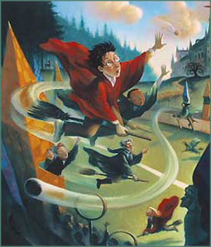 « you can't cancel Quidditch ! »