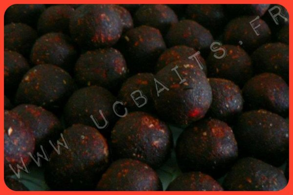 UC Baits > Choco Spicy