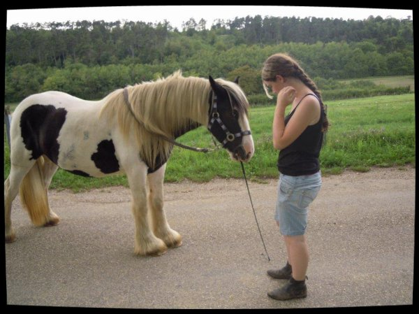 Faites de votre cheval un danseur....