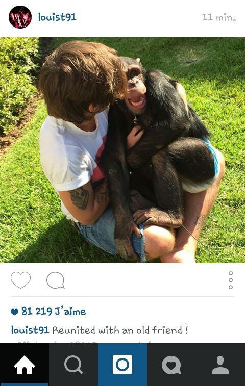 Louis a retrouvé un vielle ami ^^ (photo sur son instagram)