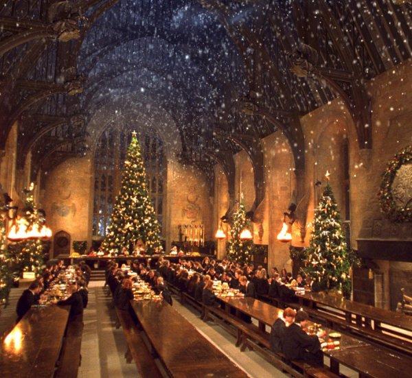 Chapitre 22 Noël à Poudlar
