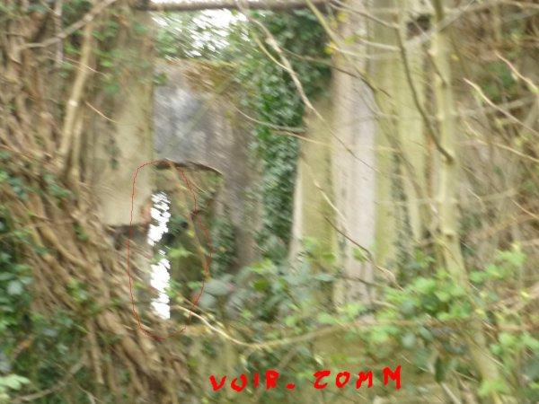 Fantôme ou imaginaire ou bien réelle photo : du 11 04 2010