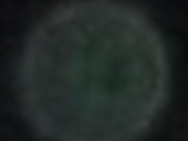 Fantôme ou imaginaire ou bien réelle : photo du 17 04 2011 agrandissements d'orbs.