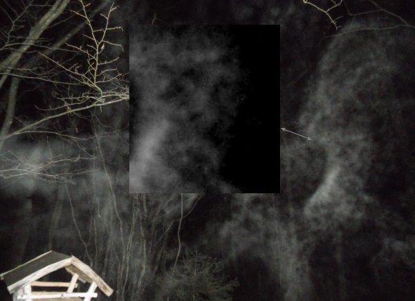 Fantôme ou imaginaire ou bien réelle : les B.V.I.s
