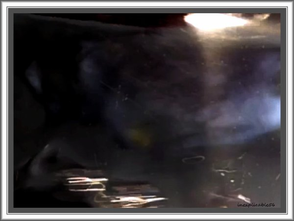 TCI AQUA vidéo.