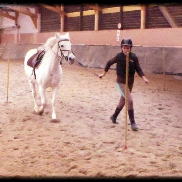 A terre - A cheval !