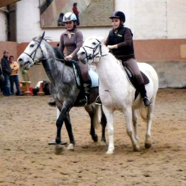 Pony games , concours ♥ 2012